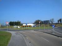 Tyrrellspass roundabout K